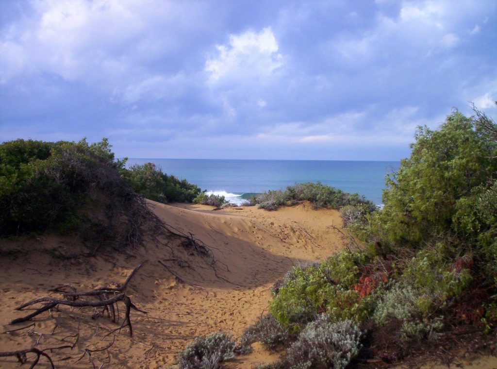 Natural Parks on the coast of Val di Cornia